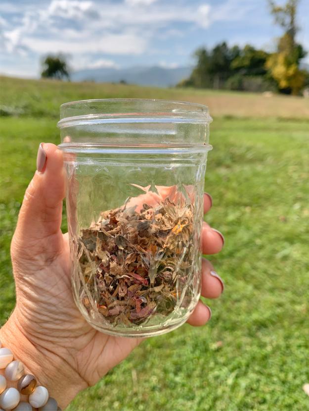 Zinnia Seeds in a jar